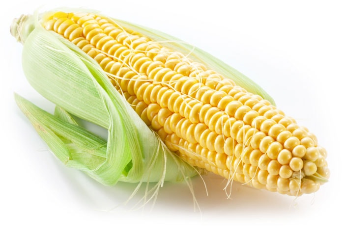 corn and politics the numerous benefits and Farm subsidies, also known as agricultural subsidies, are payments and other kinds of support extended by the us federal government to certain farmers and agribusinesses while some people consider this aide vital to the us economy, others consider the subsidies to be a form of corporate welfare.