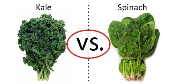 Nutrition Faceoff: Kale vs. Spinach