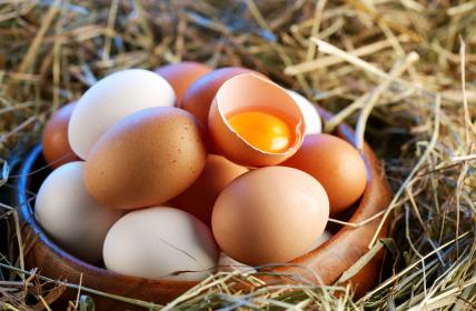 Safe List: Egg Brands Not on the Recall List