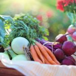 Organic Grocery Trends in BC